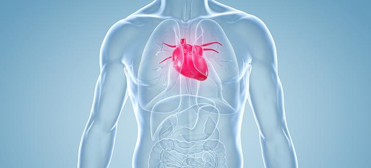 Kardiologische Diagnostik